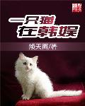 一只猫在韩娱